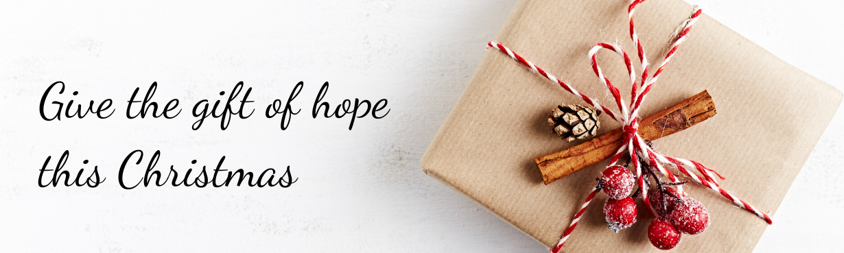 """A present with the words """"Give the gift of hope this Christmas"""""""